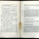 Ana Cristina Cesar lê Clarice