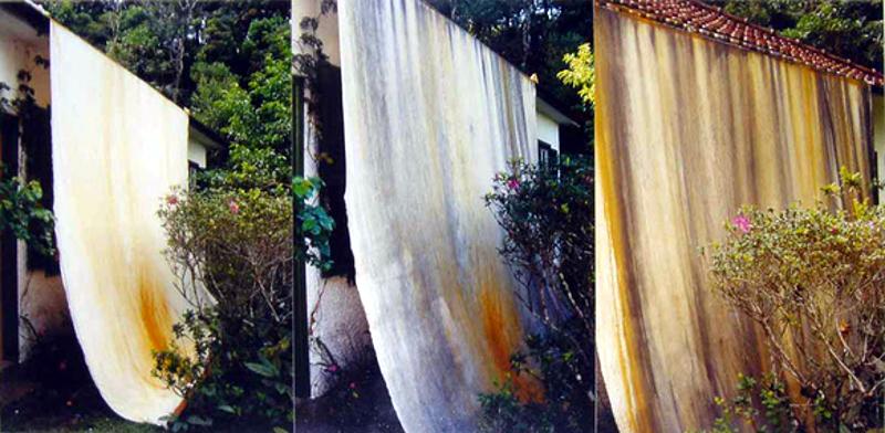 Projeto para uma pintura temporal (2002), de Thiago Rocha Pitta