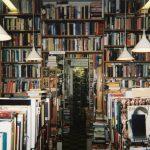 """""""Isso é literatura"""": a partir de """"Mil rosas roubadas"""""""