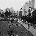 São Paulo no olhar de Mauro Restiffe